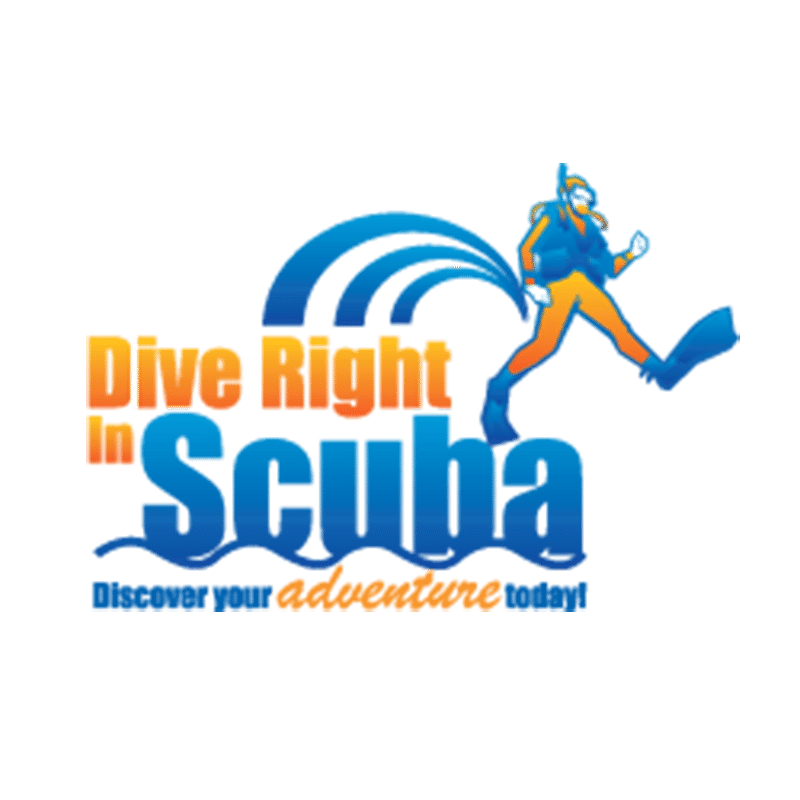Sdi Standard Open Water Kit W Dvd Dive Right In Scuba