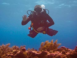 Get your scuba diving certification from Dive Right in Scuba in Chicago