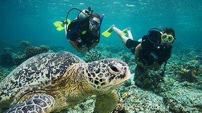 PADI Underwater Naturalist class